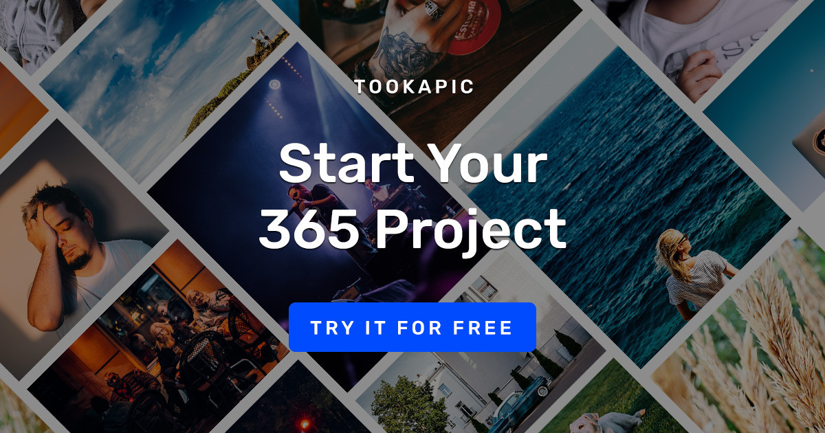 365 Project - One Photo a Day for a Year - Tookapic