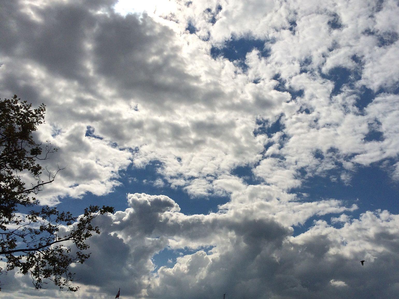 Sky of Zürich!!!!
